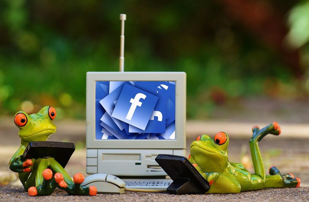 facebook frogs